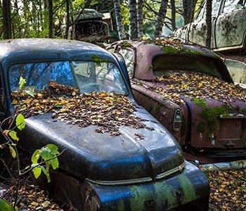 old-cars-estate-cleanup